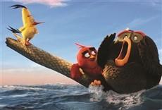 Película Angry Birds