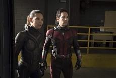 Escena de Ant Man y la avispa