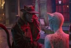 Escena de Cats