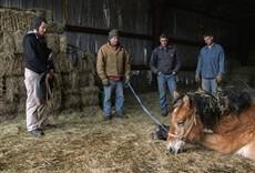 Escena de Dra. Dee: veterinaria de Alaska