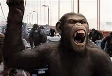Escena de El origen del planeta de los simios