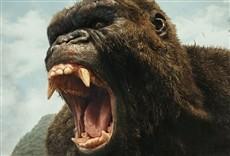 Escena de Kong: La isla calavera