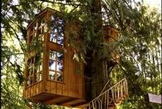 Mansiones en los árboles