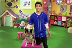 Serie Mutt & Stuff, escuela de perros
