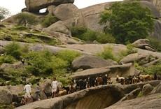 Escena de O santuário dos leopardos