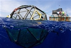 Escena de Odisea submarina