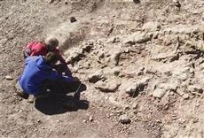 Escena de Paleontología - Huellas de El Tranquilo