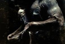 Película Pandorum: Terror en el espacio