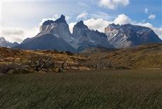 Serie Patagonia salvaje