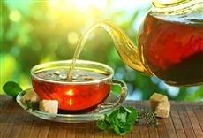 Televisión Revolution Tea