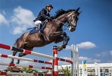Televisión Saltos Hípicos - Equitación Argentina - GP Campo C