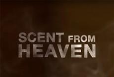 Televisión Scent from Heaven