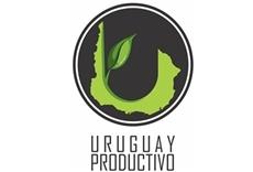 Televisión Uruguay productivo