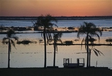 Vivi Corrientes