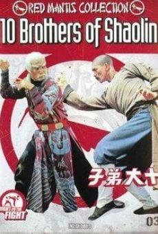 Ver película 10 Brothers of Shaolin