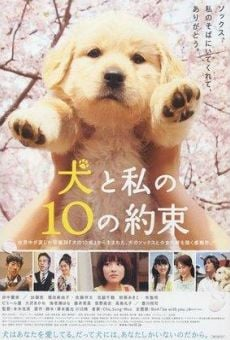 Ver película 10 Promises to My Dog