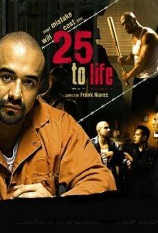 25 to Life online kostenlos