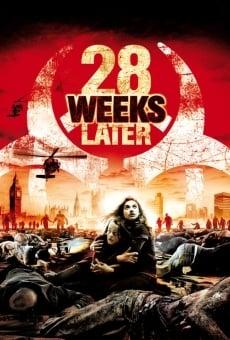 Ver película 28 semanas después