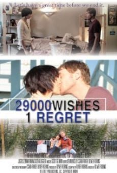 29000 Wishes. 1 Regret. online