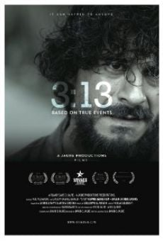 Ver película 3:13 Three Thirteen
