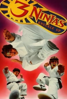 3 Ninjas Knuckle Up on-line gratuito