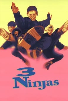 3 pequeños ninjas online