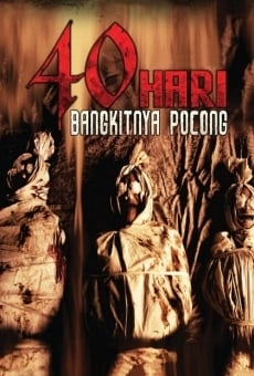 Ver película 40 Days of Shrouded Ghost Resurrection