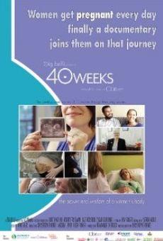Ver película 40 Weeks