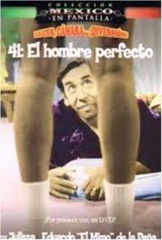Ver película 41, el hombre perfecto