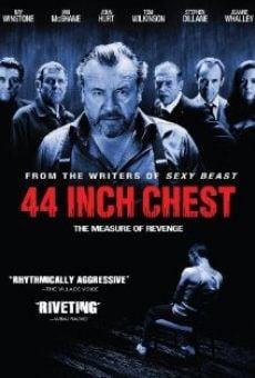 Ver película La medida de la venganza
