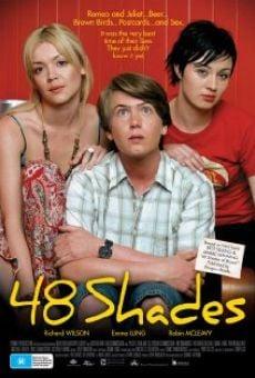 Ver película 48 Shades