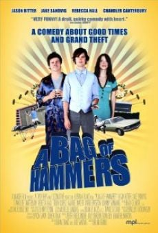 Ver película A Bag of Hammers