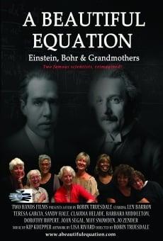 Ver película A Beautiful Equation