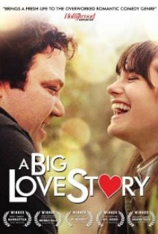 Watch A Big Love Story online stream
