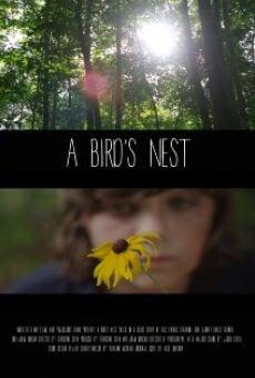 A Bird's Nest streaming en ligne gratuit
