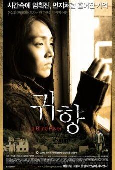 Ver película A Blind River