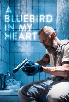 A Bluebird in My Heart gratis