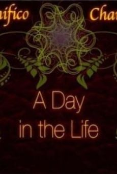 A Day in the Life of a Professional Wrestler en ligne gratuit