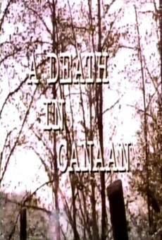 Ver película A Death in Canaan