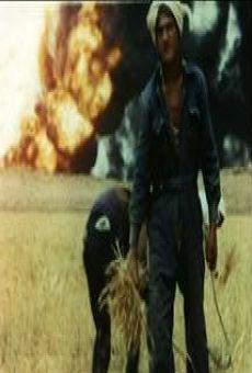 Ver película A fire