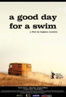 Ver película A Good Day for a Swim