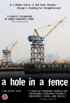 Ver película A Hole in a Fence