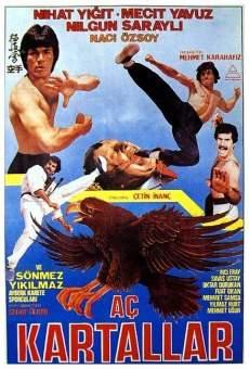 Ver película Aç Kartallar