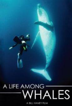 A Life Among Whales gratis