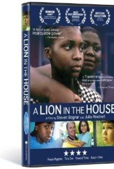 Ver película A Lion in the House