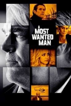 La spia - A Most Wanted Man online