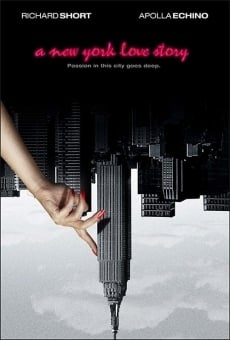Ver película A New York Love Story