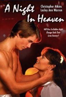 Ver película Una noche en el cielo