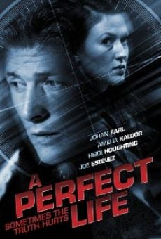 Watch A Perfect Life online stream