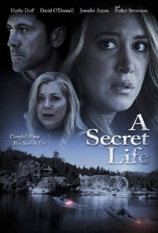 His Secret Family on-line gratuito